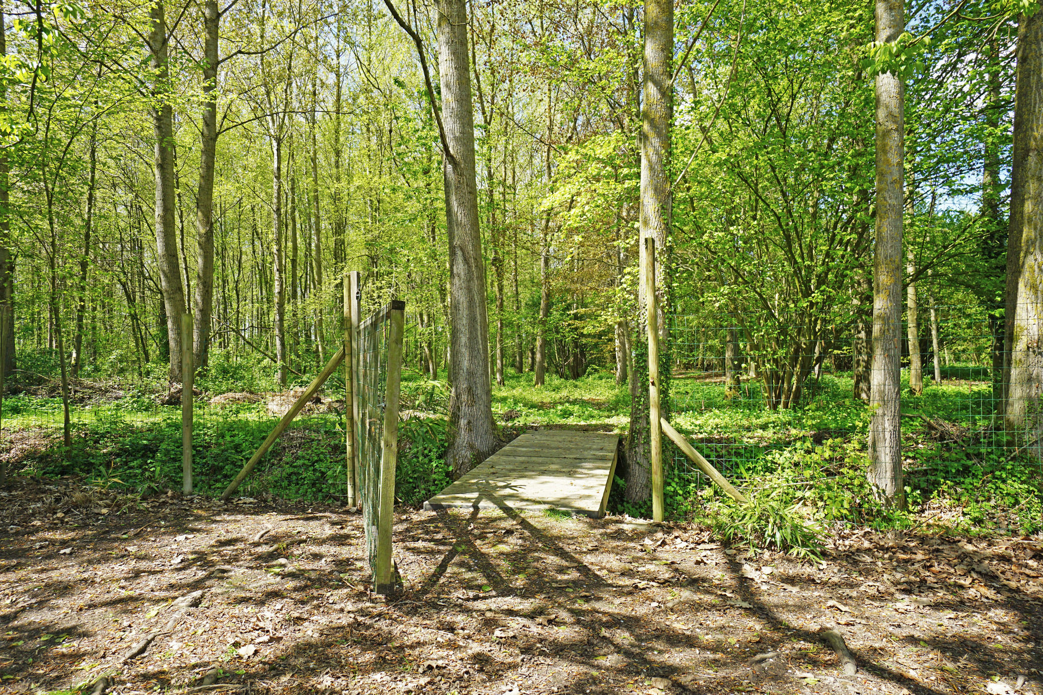 Charmante hoeve op 1 ha grond en bos te Balegem